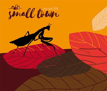 Small Town Festival